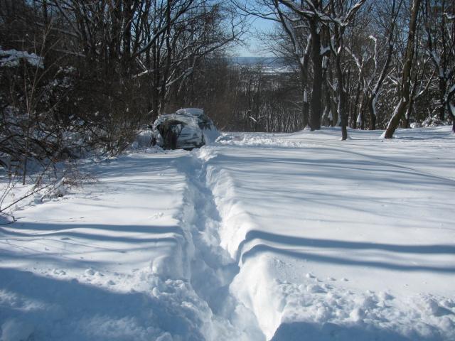 unplowed_driveway.jpg