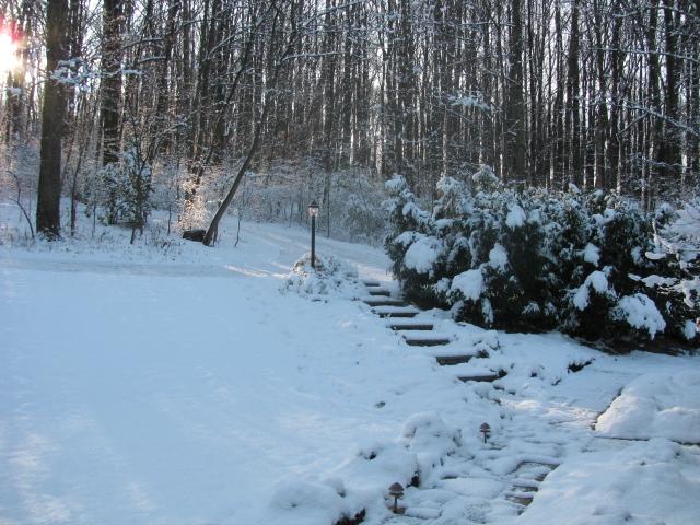 front_yard_snow.jpg